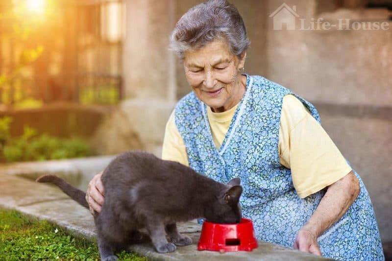 женшина со своим котом