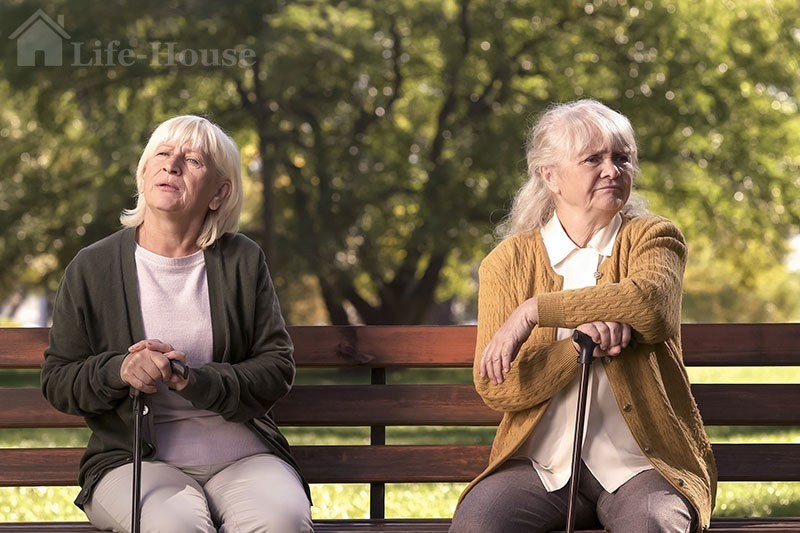 две женщины, сидящие на лавке в парке